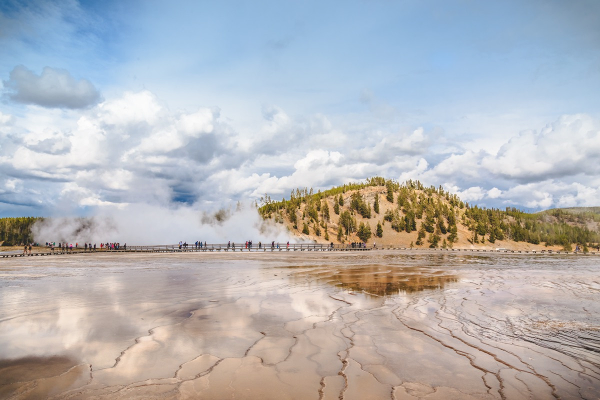 Yellowstone-37