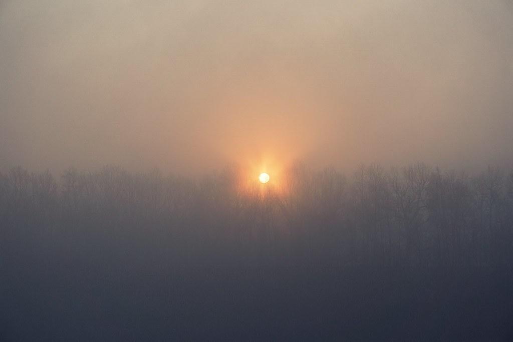 le matin brumeux