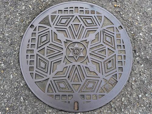 Wakayama city Wakayama pref, manhole cover 5 (和歌山県和歌山市のマンホール5)