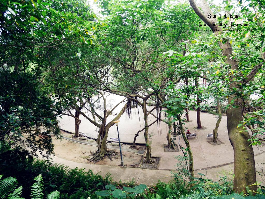 台北士林區天母一日遊行程推薦天母公園 (6)