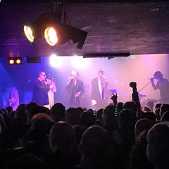 Brilliant night last night, lots of dancing, drinking and laughing. Alabama3 at the O2. I'm paying the price today but it was worth it.