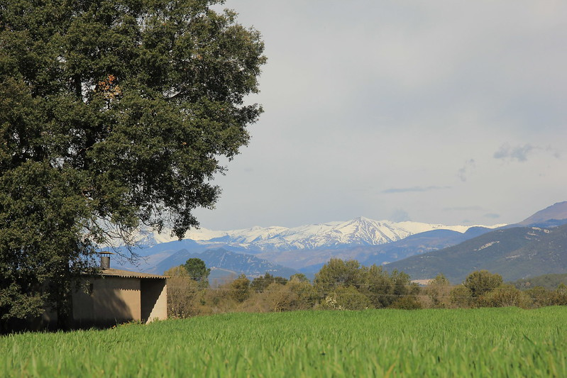 Snow-capped peaks of the Pyrenees