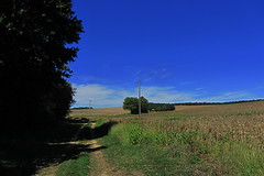 20120916 19 228 Jakobus Weg Feld Bäume - Photo of L'Isle-Arné