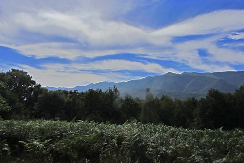 20120925 27 083 Jakobus Wolken Pyrenäen Hügel Wald Farne