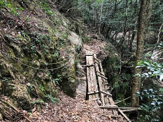仙ヶ岳 南尾根 朽木橋