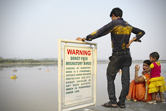 DO not feed swan boats #travel #india #punjab #chandigarh #street