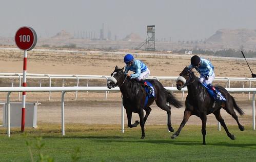 Meeting No. 934 at Rashid Equestrian and Horse Racing Club, Bahrain.