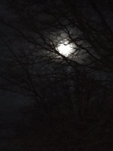 blue_moon_2018-03-31
