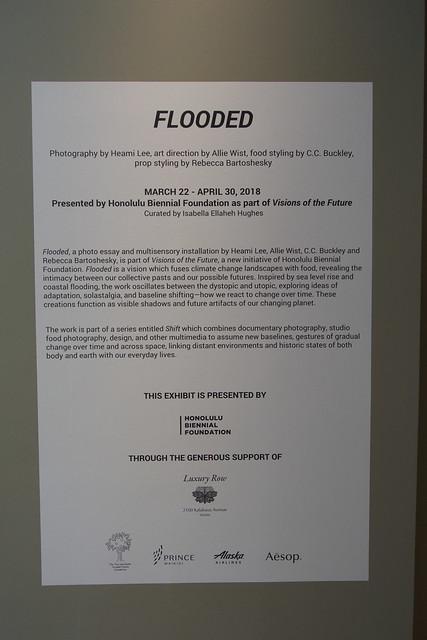 flooded01