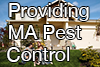 Pest Control Beverly MA
