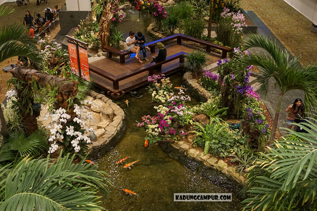 koi pond changi airport t2 view from above transit area - kadungcampur