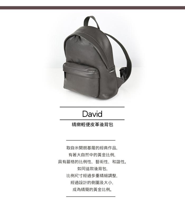 03_david_details-grey-1-700