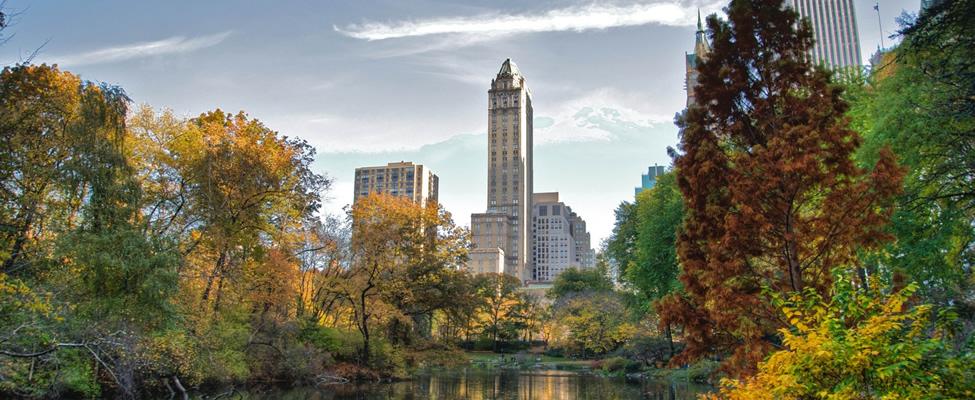 Gratis bezienswaardigheden in New York: Central Park | Mooistestedentrips.nl