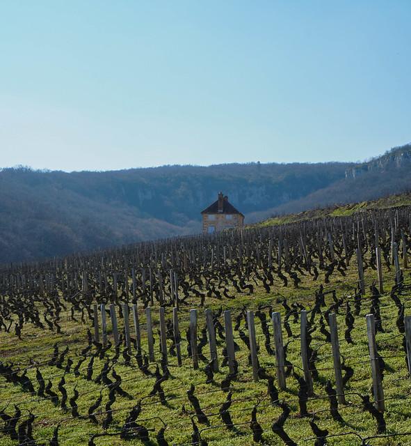 Bourgogne-11-2.jpg