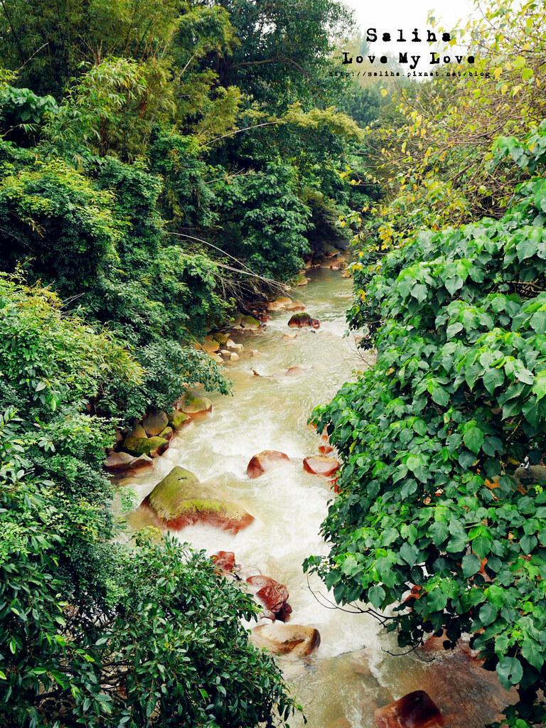 台北士林區天母一日遊行程推薦天母特色公園 (5)
