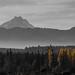 Cordillera de la costa, Chile by loretogomezdodman