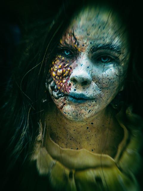 ... Alice in Zombieland ...