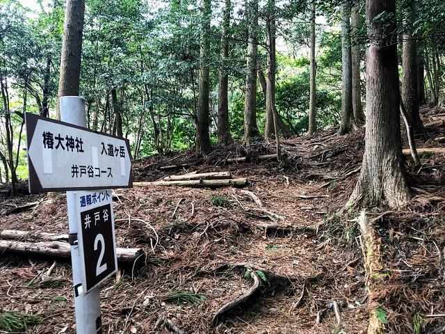 入道ヶ岳 井戸谷2