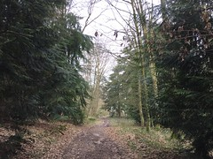 Fleury-la-Forêt02