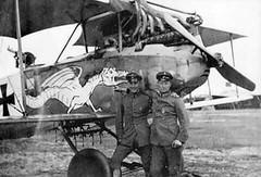1/48 Albatros C. III 39260182680_22f3b551f5_m
