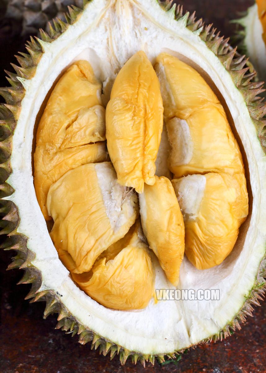 Kong-Hoi-Durian