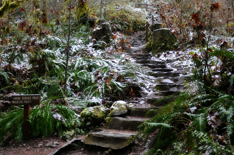 McDowell Creek Stairs @ Mt. Hope Chronicles