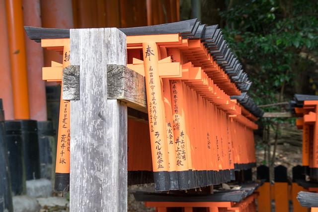 Japan 2428, Nikon D5300, Sigma 18-200mm F3.5-6.3 DC OS HSM