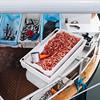 Fresh shrimps by borishots