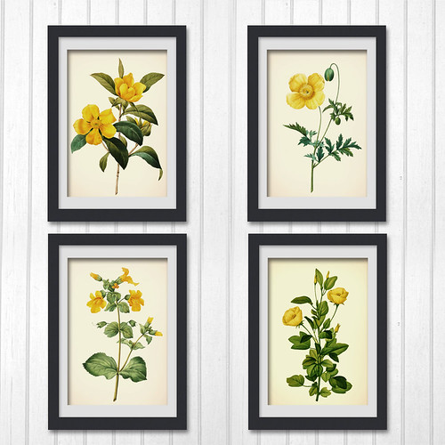 Botanical-print-sets