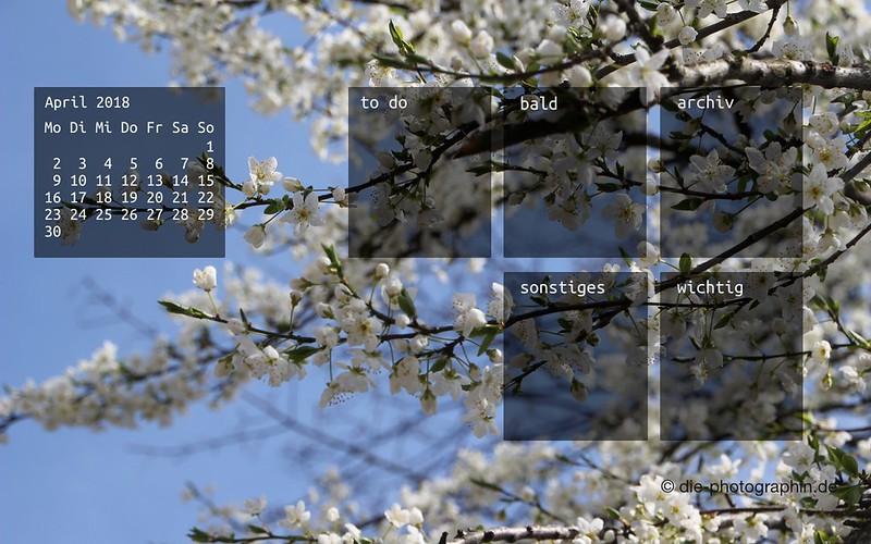 042018-bluehenderBaum-weiss-organizedDesktop-wallpaperliebe-diephotographin