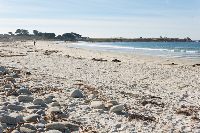 White sand beach 17, Sony NEX-6, Sigma 30mm F1.4 DC DN | C 016