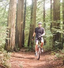 Scott on Big Trees