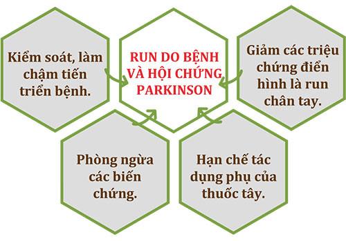 Cơ chế tác động của Vương Lão Kiện với chứng run trong bệnh hoặc hội chứng Parkinson
