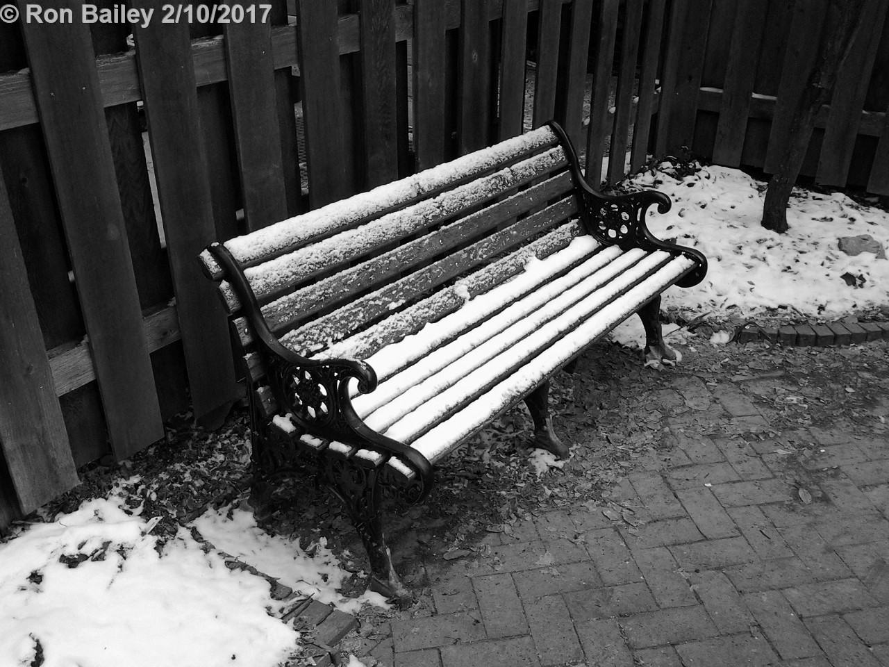 Seats in Black-and-White 2-10-2017 10-24-04 AM