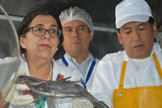 Fiscalización carros de pescados Semana Santa