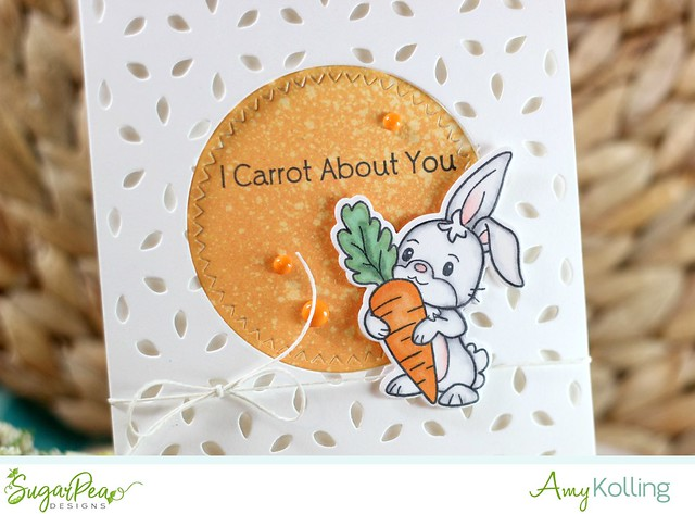 Carrot about you2