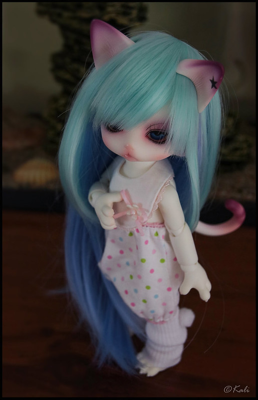 [Zuzu Delf Persi (LUTS)] Perle, Rubis & Milady (chats-chats) - Page 2 40081646055_20c44a19d0_c