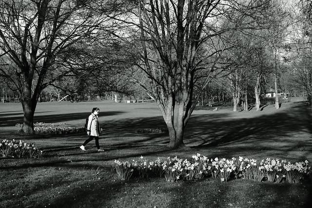 light&shadow@Wertwiesenpark, Heilbronn