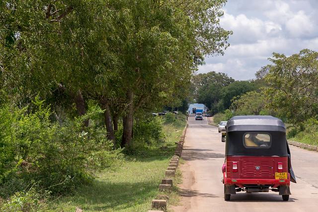 Thanamalvila Road