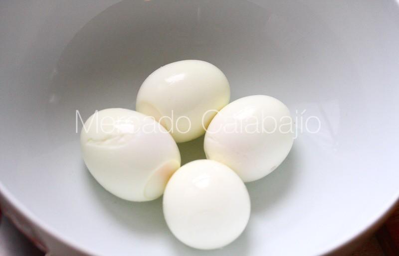 CASCAFLOTE DE MARMOLEJO07