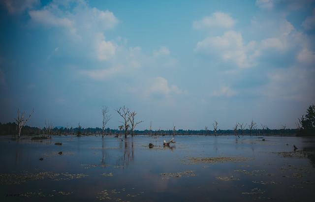 Cambodia-29