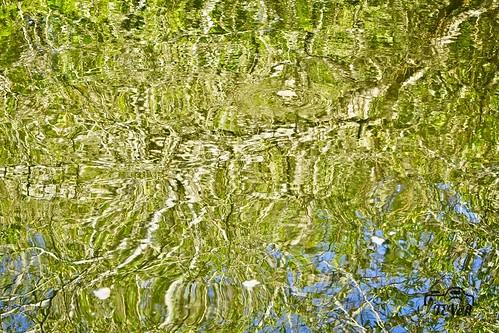 Verde Lago
