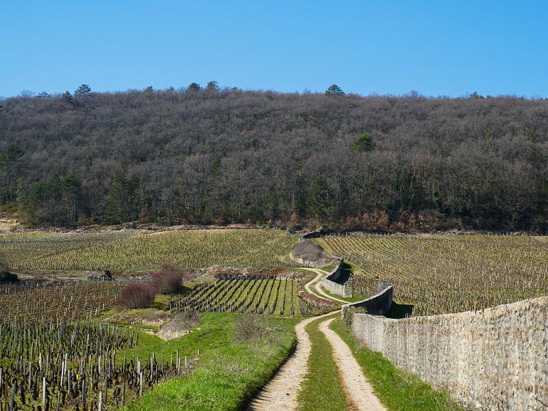 Bourgogne-6-2.jpg