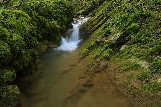 Ruisseau de Noirefontaine dans l'Ain