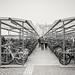 L'armada de vélos...