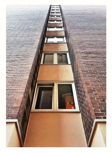high out  (c)ariane coerper