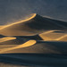 Windswept by D Breezy - davidthompsonphotography.com