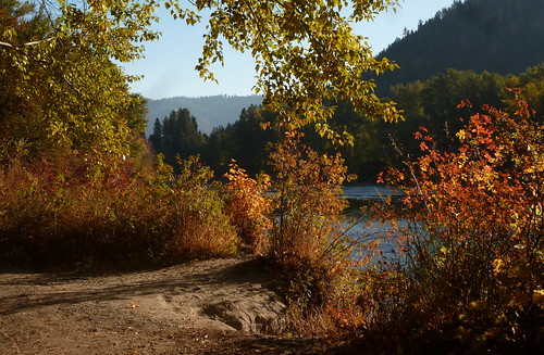golden autumnfoliage trees wenatchee river leavenworth bikepath