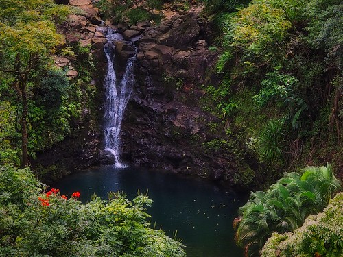 On the Road to Hana, Maui