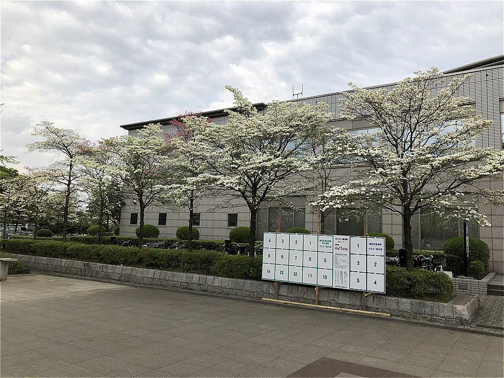 20180407_光ヶ丘 (2)